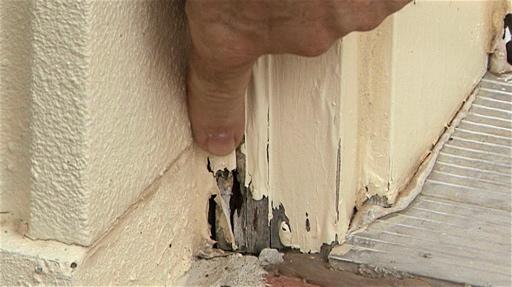 Termite Exterminate