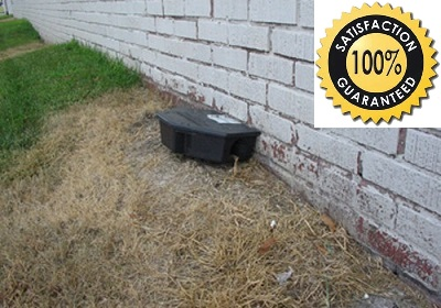 Rat sized bait stations placed on exterior of building.